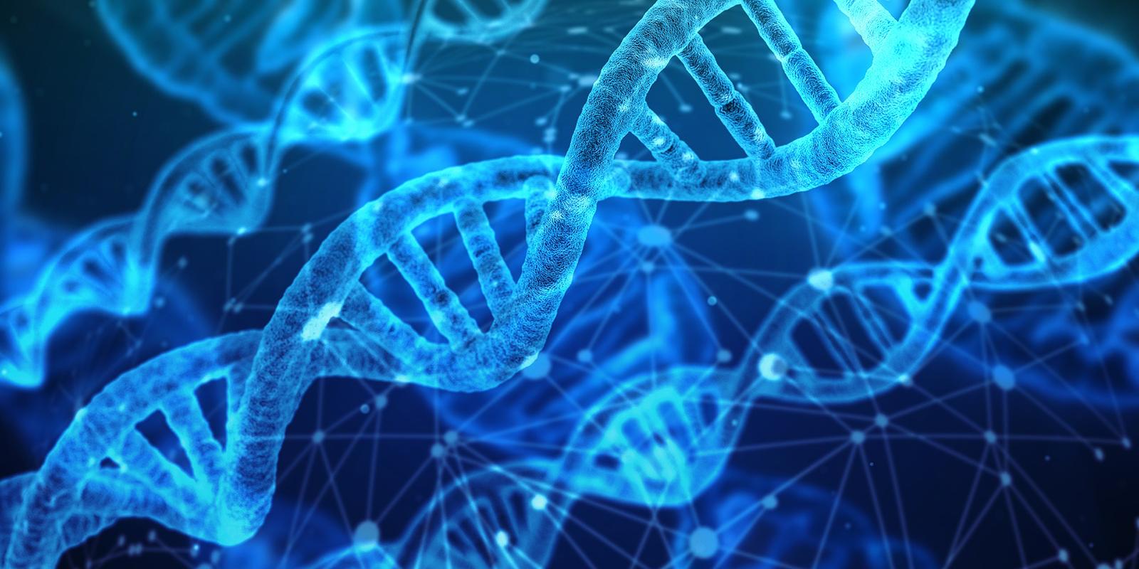 DNA molecule.png